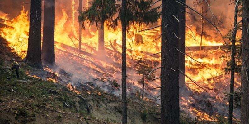 Naturkatastrofer som skakade Sverige